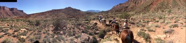 horses_moab2