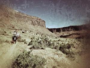 horses_moab3