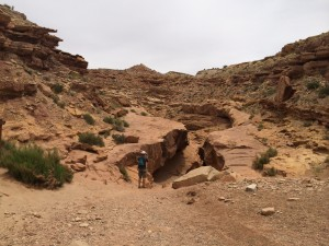 little_wild_horse_canyon1