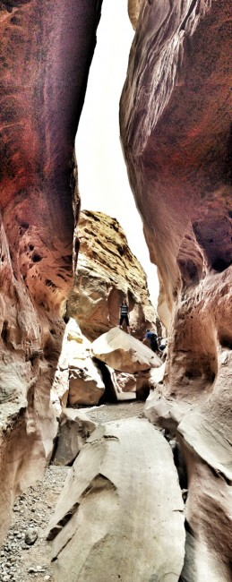 little_wild_horse_canyon8