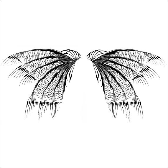 wings3_570px