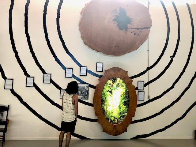 kauri Museum New Zealand